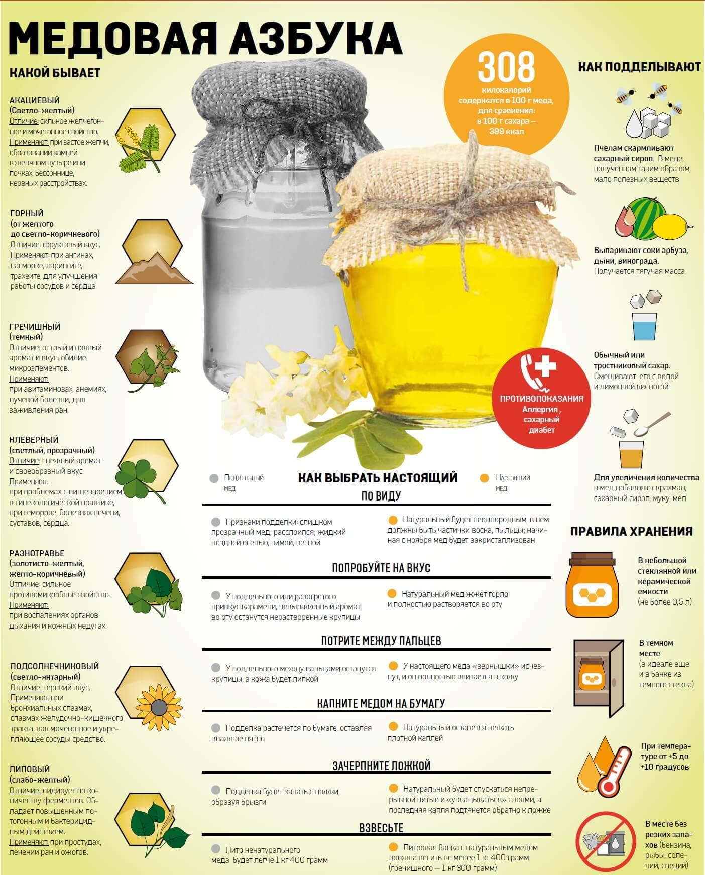 Медовая азбука, как выбрать, хранить, добывать мед