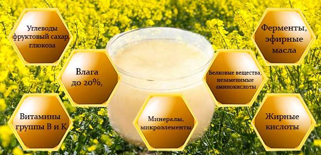 Состав рапсового меда