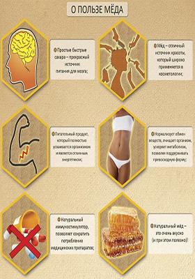 Польза меда