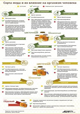 Сорта меда и их применение