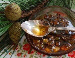 Сосна и мед - могучее лекарство