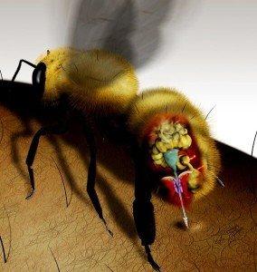 Устройство пчелиного оружия