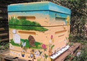 В улье из пенополистирола пчелы реже роятся
