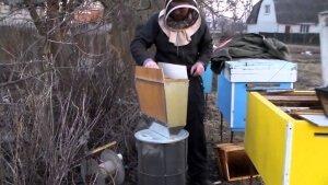 Наращивание пчел на зиму