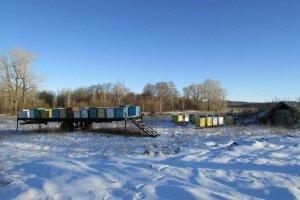 Подготовка ульев к зимовке