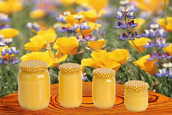Полезные свойства аккураевого меда