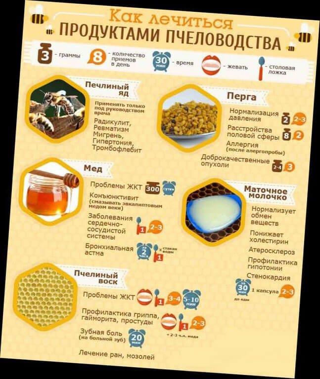 Как лечиться продуктами пчеловодства