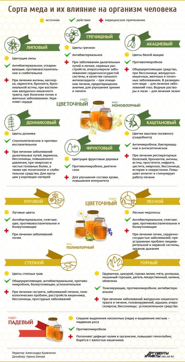 Сорта меда и их влияние на организм человека